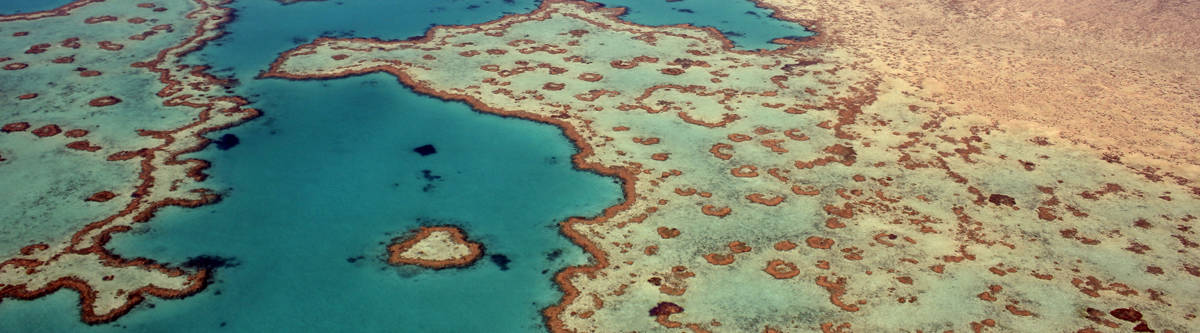 The Great Barrier Reef of het grote barrière rif.