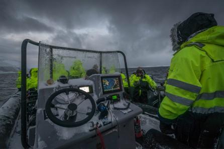 Noorwegen walvis tour