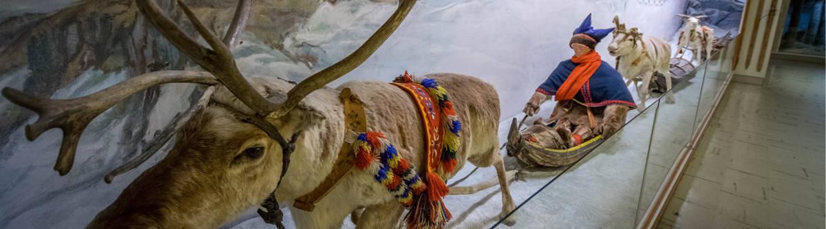 tromso polarmuseum