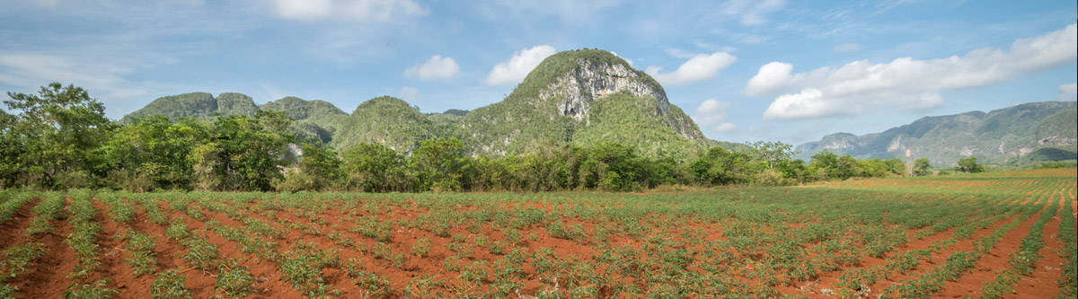 Fidel Castro's favorite place in Cuba; The Vinales valley.