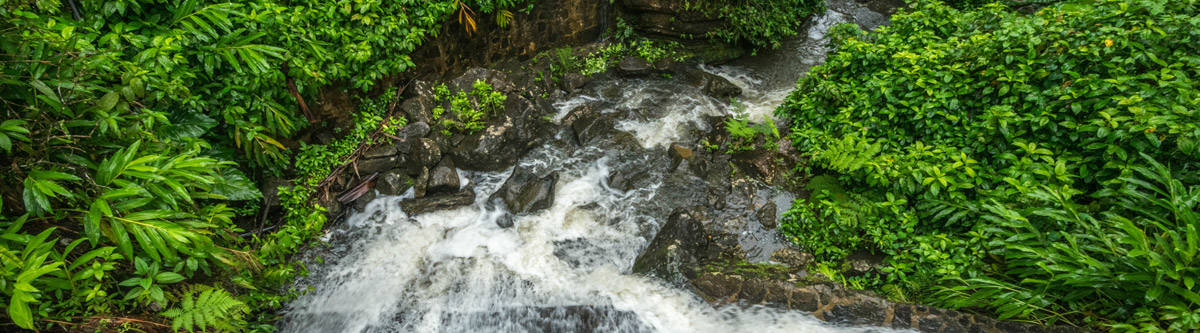 One of the waterfalls at the El Yunque rainforest.