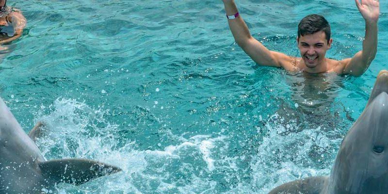 Dolphin swimming curacao seaquarium