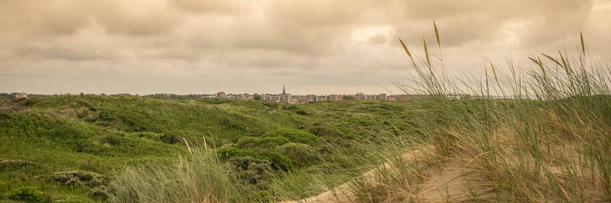 The dunes of Katwijk Aan Zee.