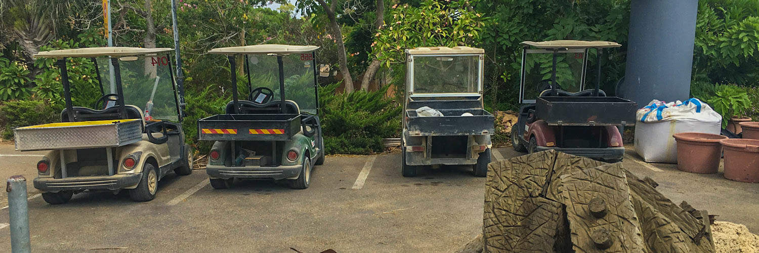 The only way to electronically enter the Kibbutz is via golf carts!