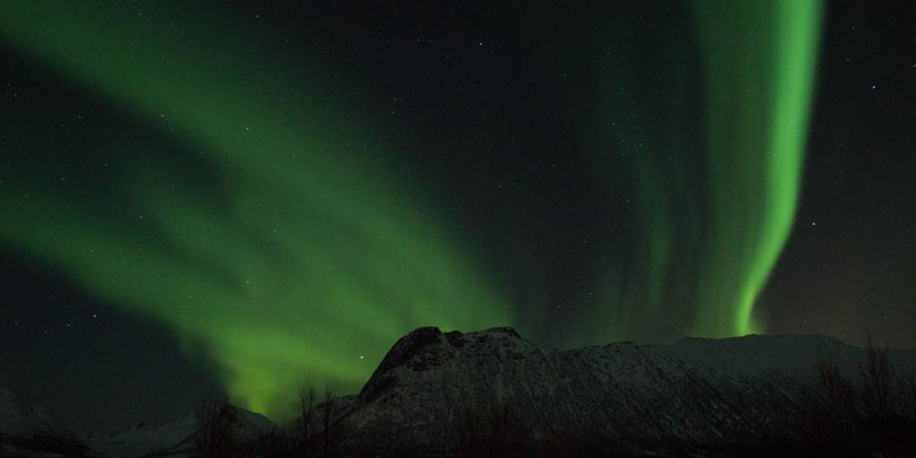 northern lights in the lofoten