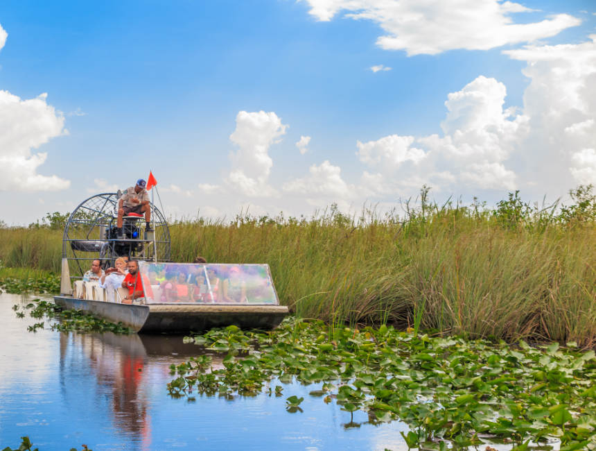wildlife national park florida