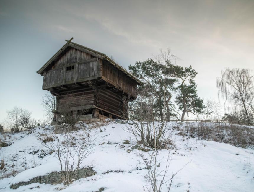 Djurgarden things to see in Stockholm - Skansen