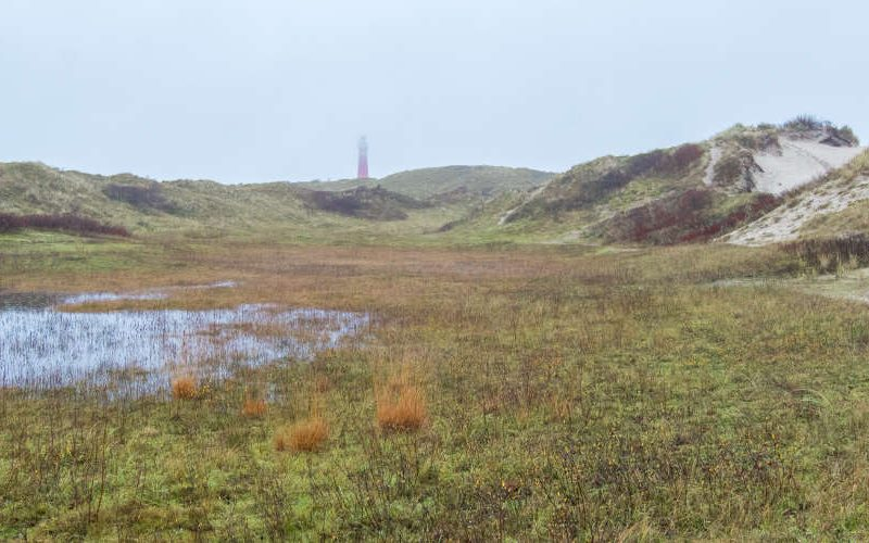 discovering schiermonnikoog national park