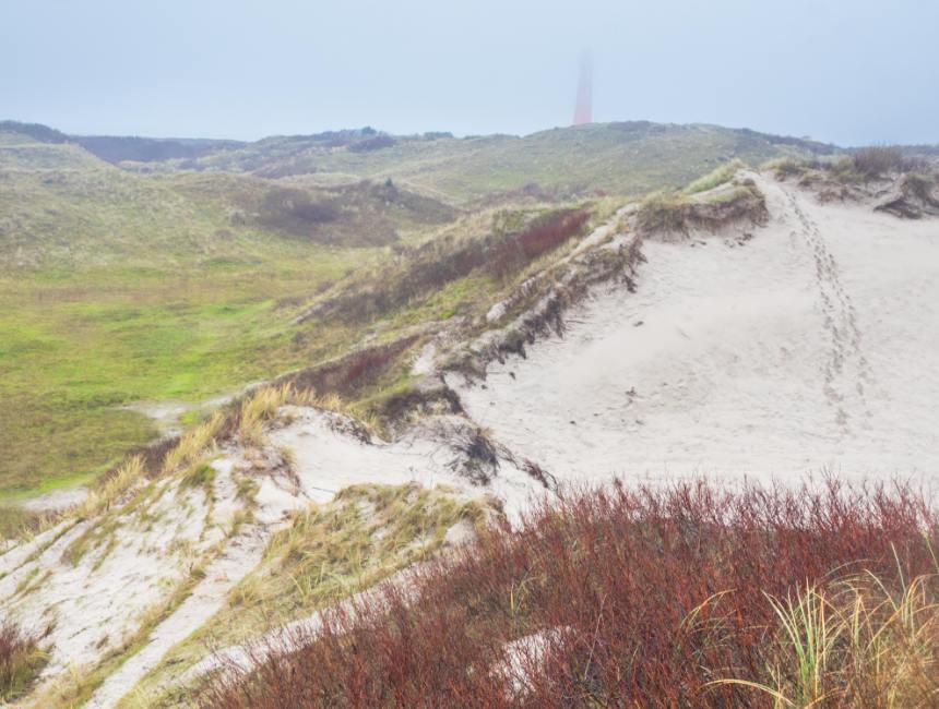 dunes schiermonnikoog things to do