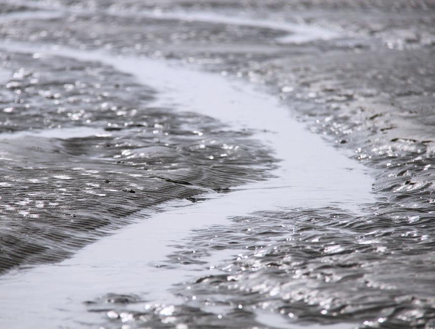 national park schiermonnikoog mudflats