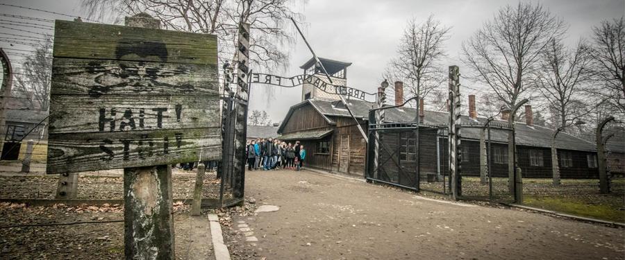 auschwitz birkenau museum poland