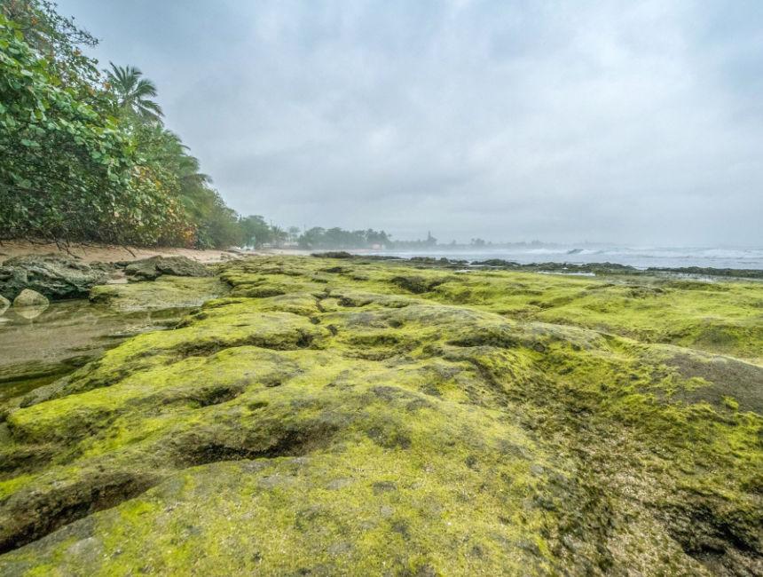 cueva del indio moss beach puerto rico