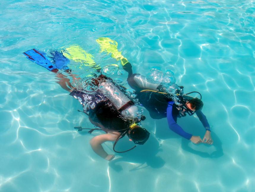diving certification padi