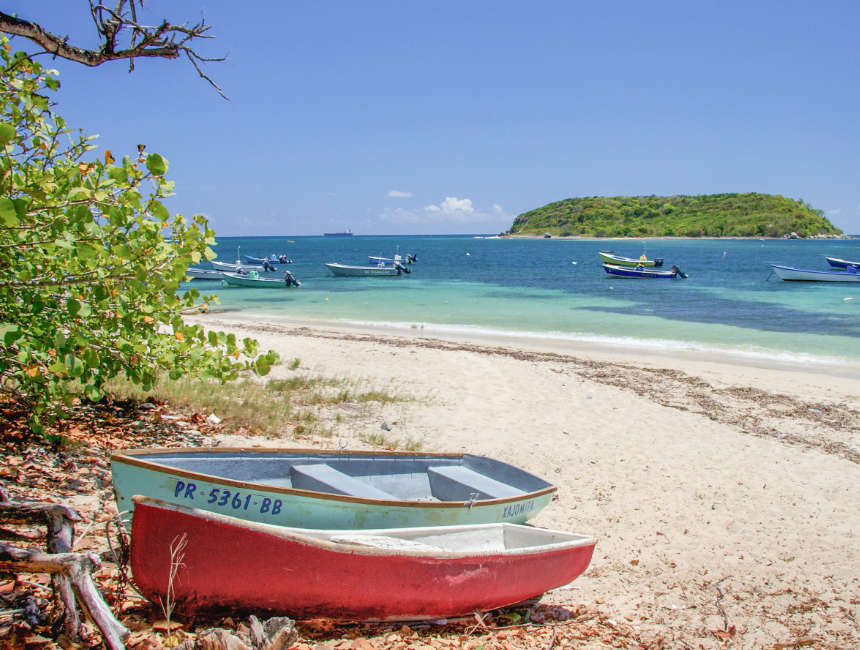 vieques fun things to do in puerto rico