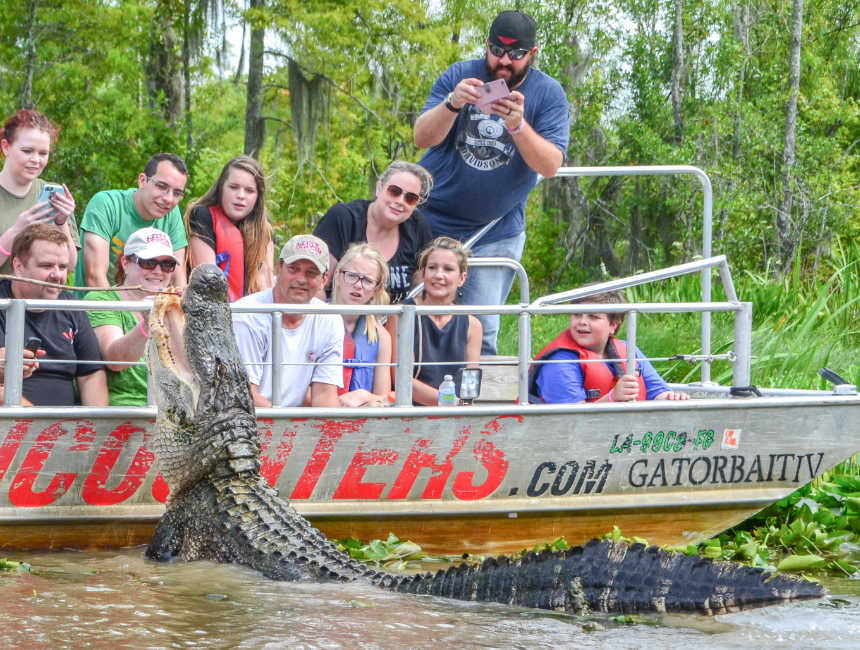 bayou new orleans things to do