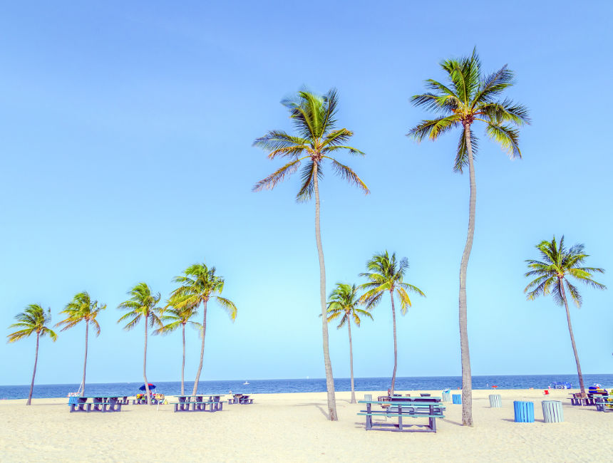 fort lauderdale things to do in miami
