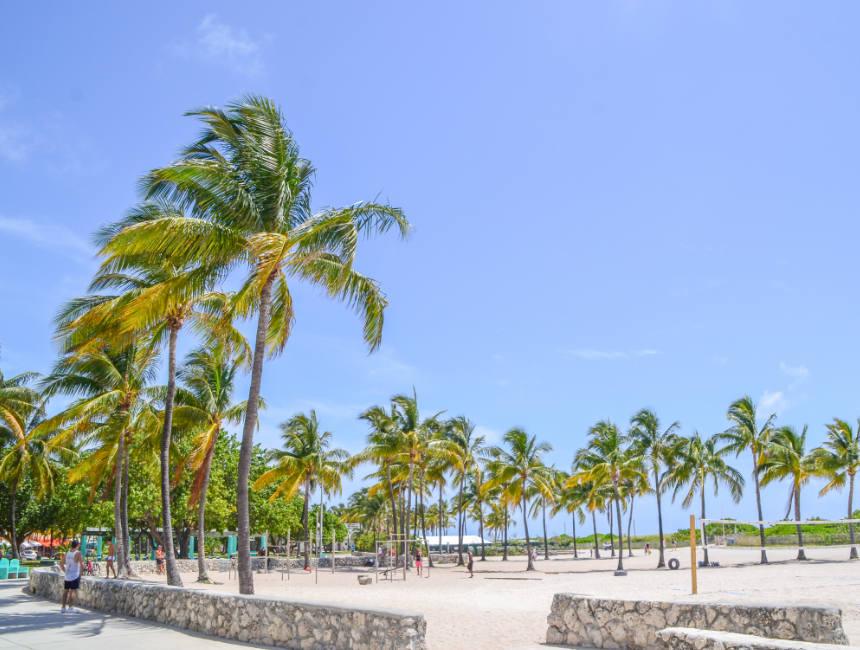 miami things to do miami beach