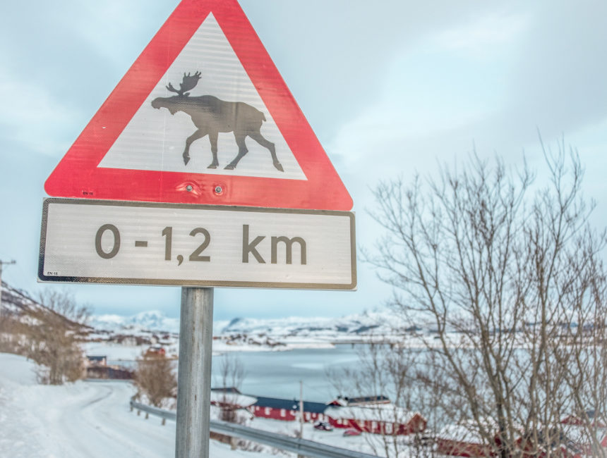 parking regulations norway