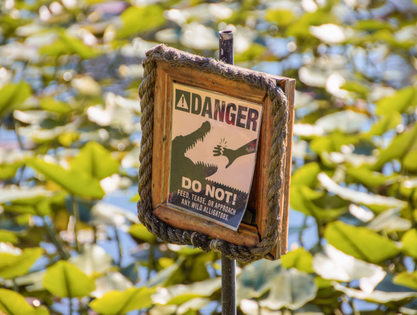 visit everglades national park