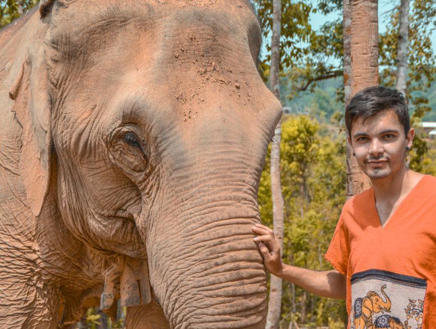 thailand elephant tours