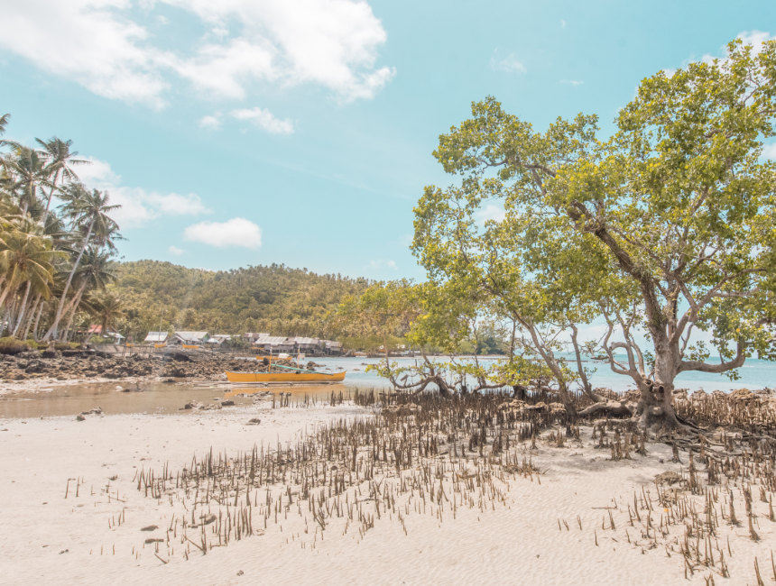 best places to go in the philippines siargao mangroves
