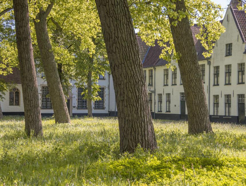 Bruges Beguinages