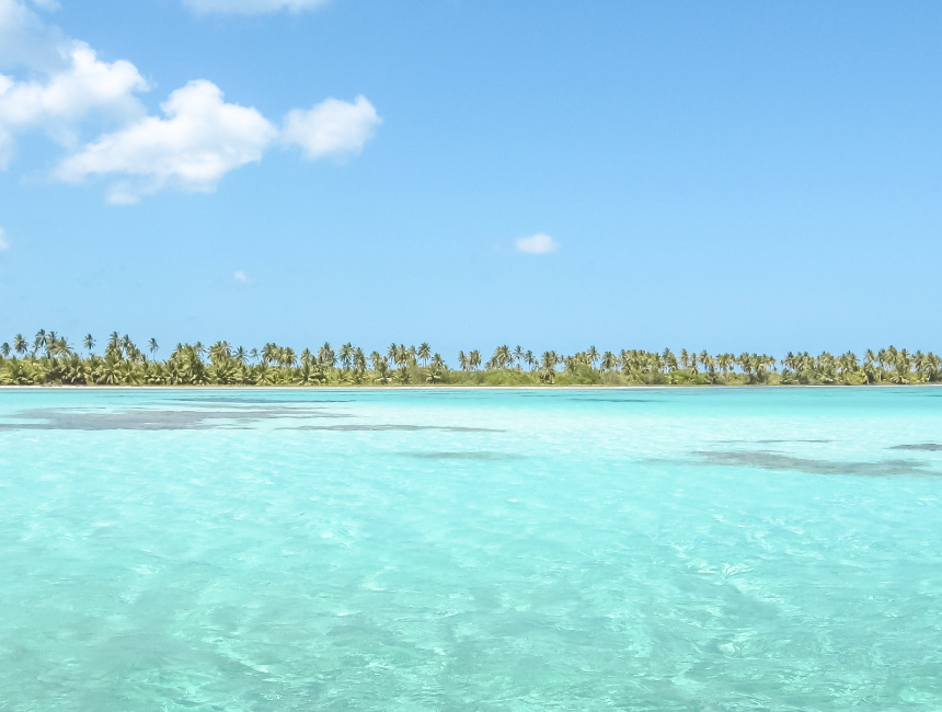 day tour dominican republic saona island