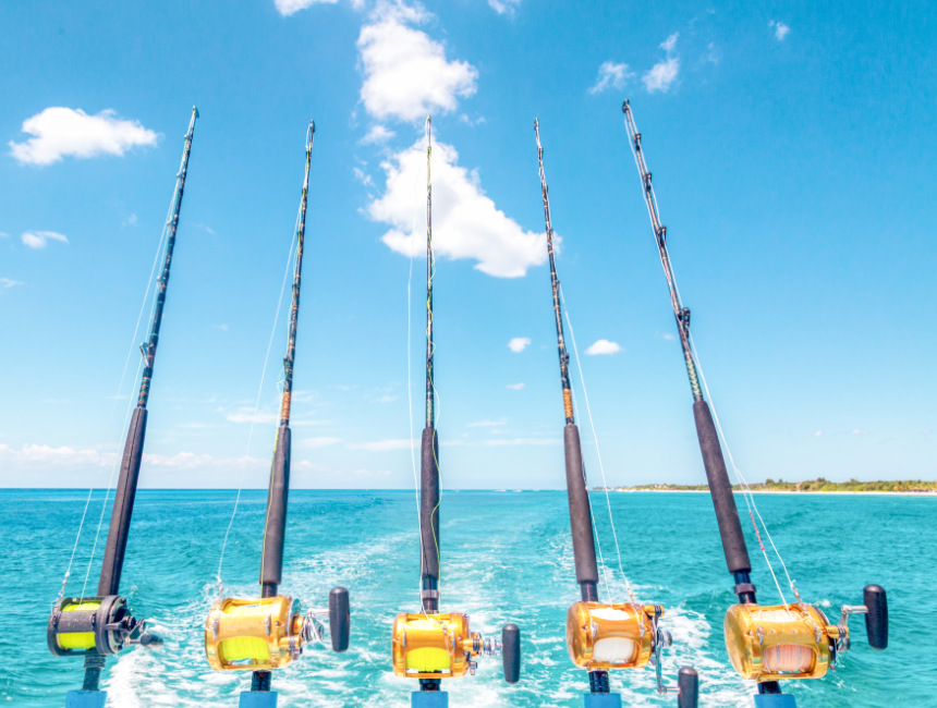 excursions punta cana deep sea fishing