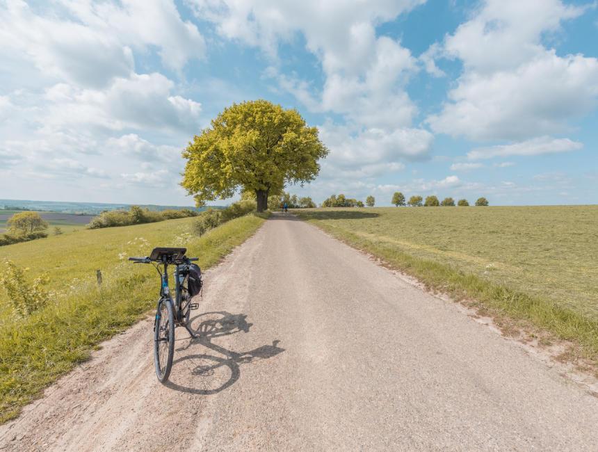 south limburg cycling