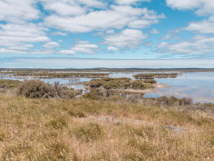 cape gantheaume kangaroo island sights