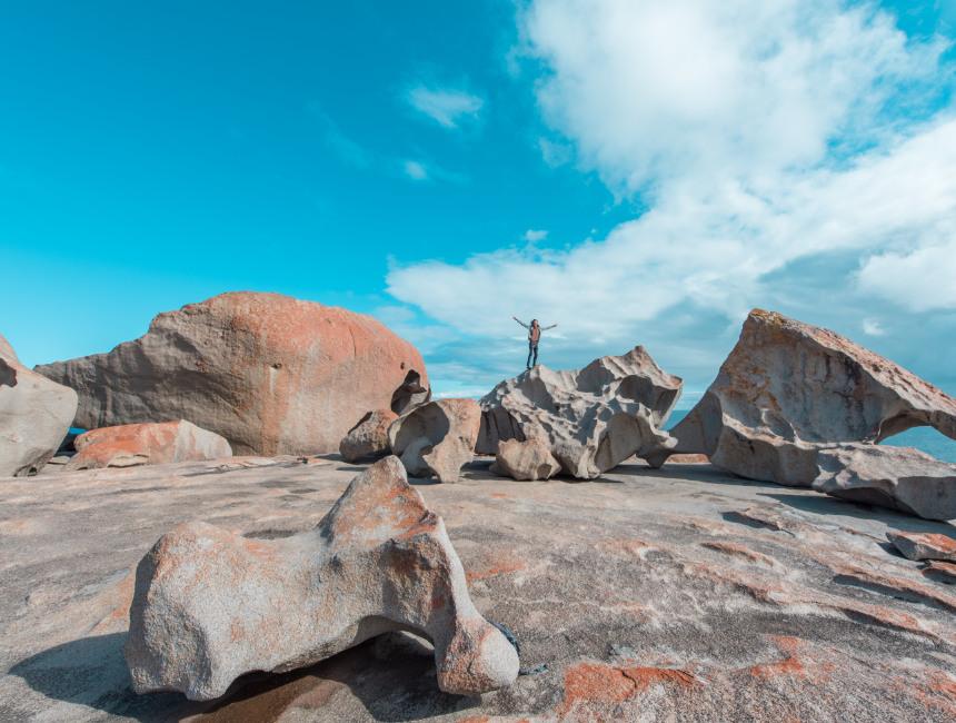 kangaroo island activities