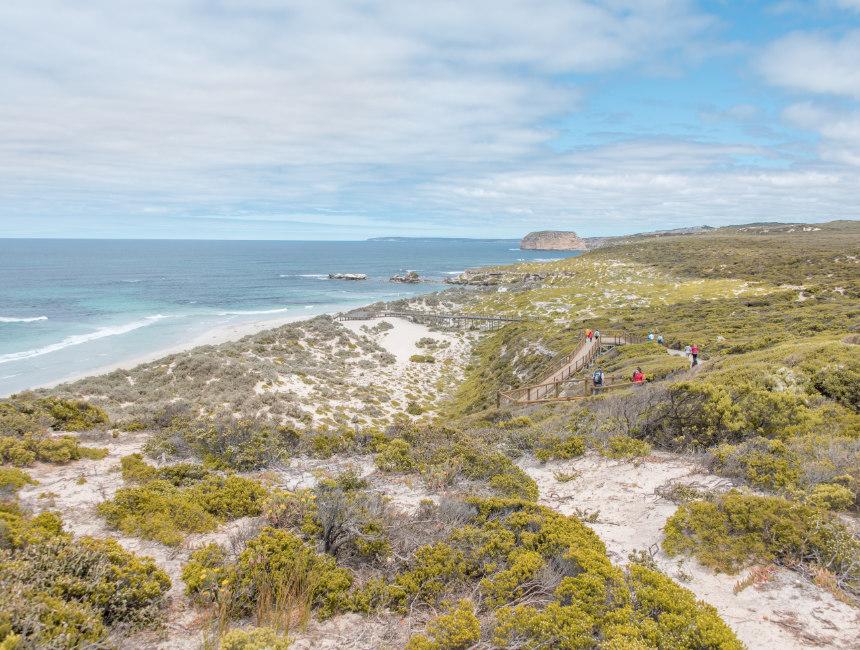 seal bay conservation park kangaroo island