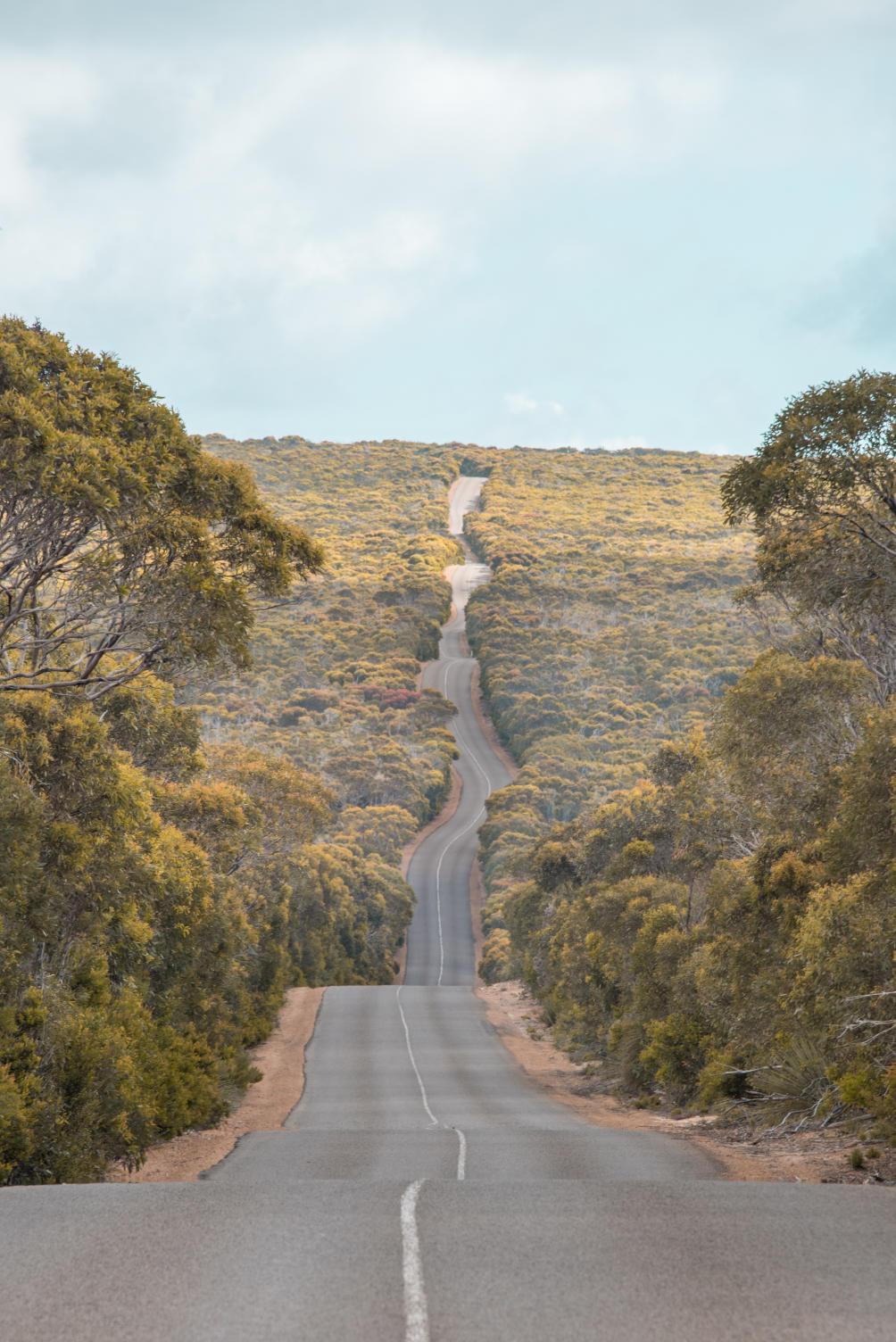 viewpoints kangaroo island