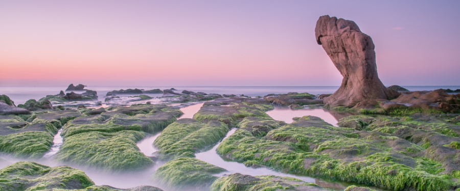 Co Thach Vietnam beach
