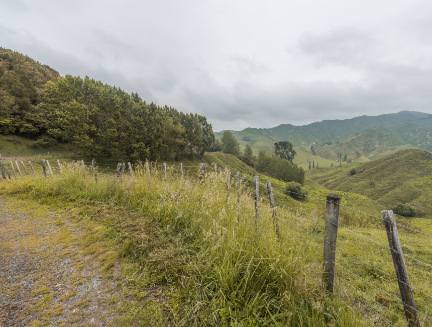 forgotten world highway new zealand things to see