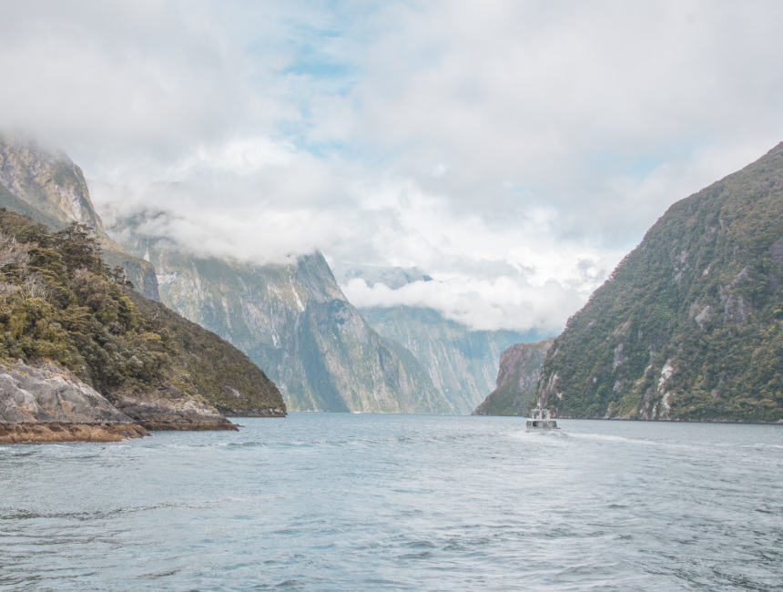 milford sound things to see in new zealand