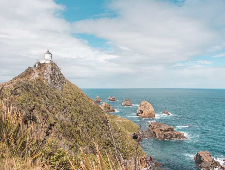 nugget point things to do in new zealand