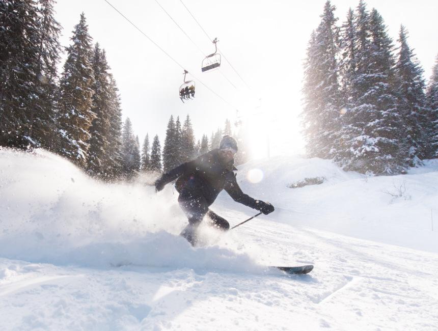 ski area portes du soleil