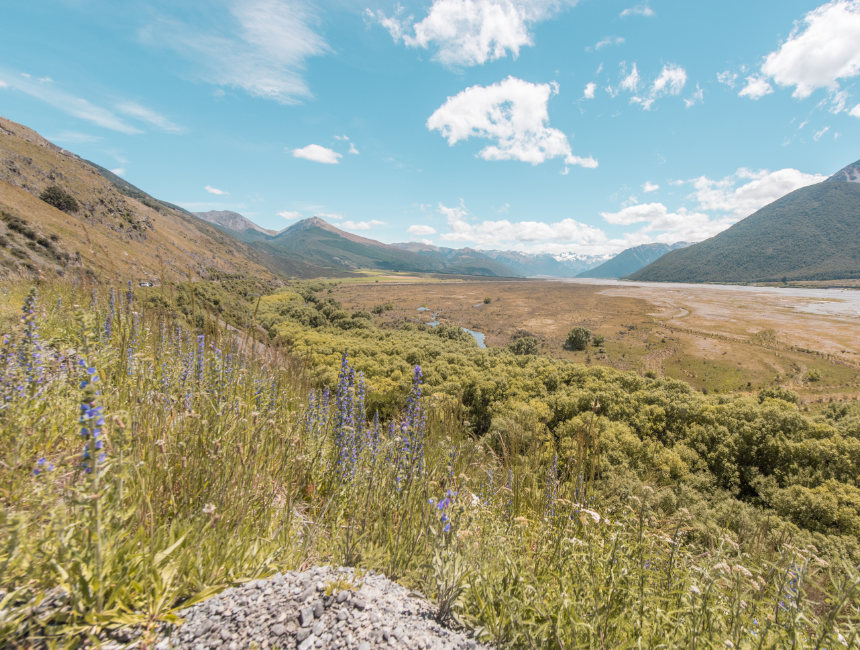 what to do in new zealand great alpine highway