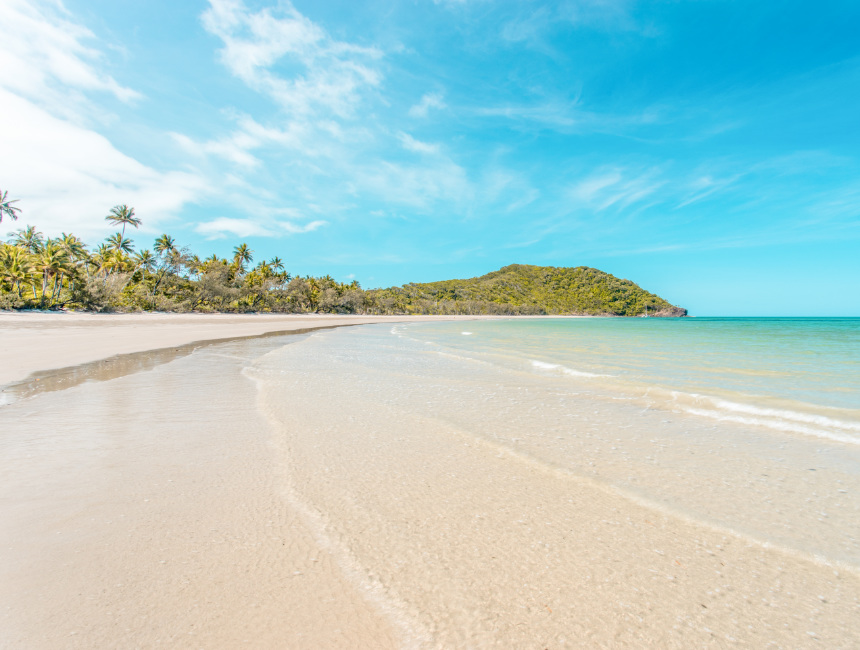 what to see in australia cape tribulation
