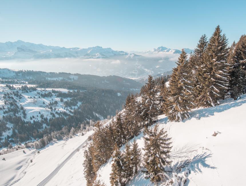 winter sport les gets portes du soleil