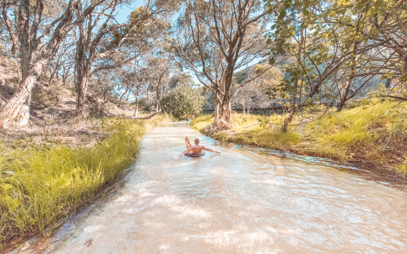 eli creek fraser island things to do